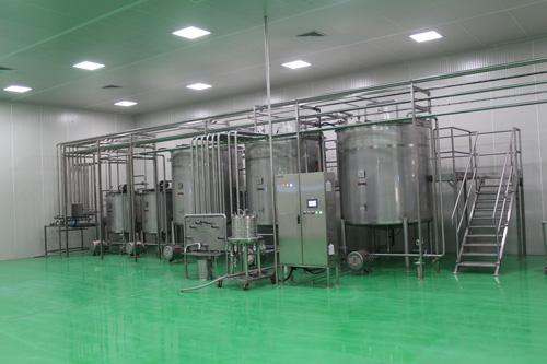 Producción de aceite de menta en bruto