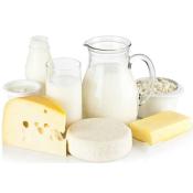 miniplanta-elaboracion-productos-lacteos
